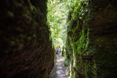 Wandern Eisenach